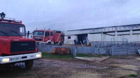 Incendio en nave de cerdos en Mestanza y accidentes varios
